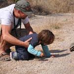 Theo sieht seine erste Schildkröte