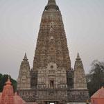 Der Tempel hinter dem der Buddha-Baum steht