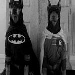 Ole´s Superhelden