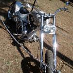 Das Bike ist verziert mit Texten aus dem Sanskrit.