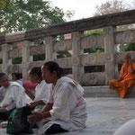 Meditation vorm Buddha Baum (samt telefonierendem Mönch hinten rechts...)