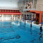 Zajęcia na basenie