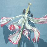 Frauen in der Lebensmitte tanzen übermütig