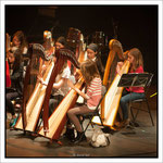 Harpes. Par David Lair Photographe à Ancenis.
