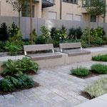 Terrassenparterre - Blattwerk in verschiendenen Grüntönen und Blattgrößen