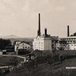 Historische Aufnahme mit Obstgarten östlich des Malzhauses. Der Bereich an der Bahnlinie wurde später als Park angelegt.