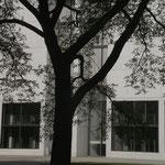 Bestandsgehölze als Baumschleier in der Türkenstraße