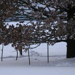 Unterstützung für kommende Schneelasten