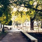 Neugestaltung der Wegeverbindung mit Erhalt des Baumbestandes - Spielbereich