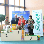 Best in Show Jugend am Samstag