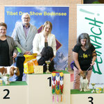Best in Show Jugend am Sonntag