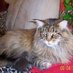 Clayton mit fast 3,5 Jahren
