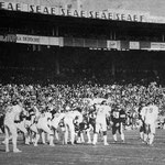 11000 personnes au Stadium pour encourager les Ours - 1990