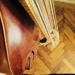violone schürch 2002 kopie nach busch