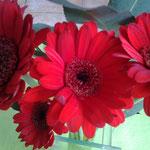 Une fleur pour la fête des mamans...