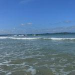 Petits surf