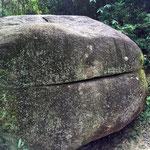 美味しそうに見えてくるハンバーガー岩