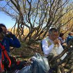 ブナ林とカタクリの中で昼食