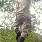 木に登って枝払い