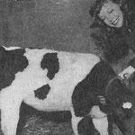 En 1955, avec un petit veau