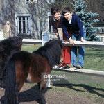 En mars 1970, Cécile Aubry, Mehdi, les poneys shetland Paquita et Lancelot et l'ânesse Samba dans le parc du Moulin Bleu
