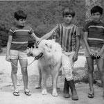 Mehdi avec Yalov et ses propiétaires