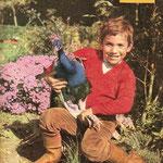 La plus belle parure du petit zoo de Mehdi est un paon. Très sauvage et de caractère indépendant, il ne se laisse approcher que par le petit garçon © Télé 7 jours n°292