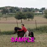 En 1970, Mehdi et le poney Lancelot. © ebay