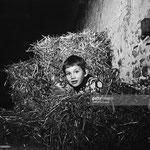 En novembre 1965, Mehdi et un petit chat dans une botte de paille