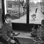 En 1968, Mehdi avec une oie au Moulin Bleu