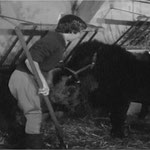 En 1958, avec le poney Barbara au Moulin Bleu