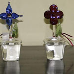 Flower (Red & Blue): 0.07 ltr