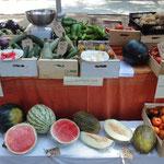 Més imatges www.ecoturis.net