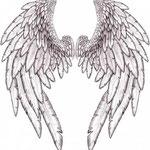 """Croquis """"ange"""" réalisé par le Client."""