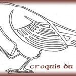 """Croquis """"Oiseau"""" réalisé par le Client."""