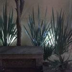 Iluminacion de Jardinera Exterior