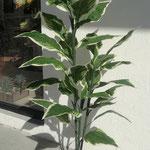 Planta artificial ( Pedir Cotizacion y Modelos disponibles )