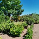 Vue  du jardin depuis la chambre Mésange / Au mas de Janita ©