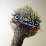 Arztpraxis mit Tiermotiv verschönert Berlin Brandeneburg Wandbild Wandbilder