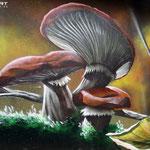 private öffenliche Auftragsgeber für Graffitiauftragsarbeiten gesucht