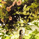 Beyond the flower