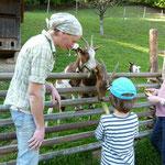 Die Ziegen möchten natürlich auch gefüttert werden.