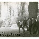 THE ALSATIANS