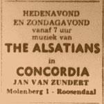 THE ALSATIANS: Brabants Nieuwsblad 10-12-1966