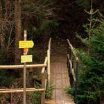 über diesen Steg gelangt man wieder zurück auf das Gemeindegebiet von Wenigzell