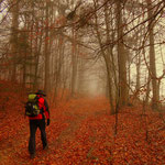 am Wanderweg nach Söchau