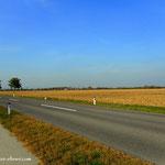 ...hier ist auch die Staatsgrenze, auf der anderen Straßenseite ist die Slowakei....