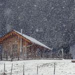 20.03.2021 - Frühlingsbeginn und der Winter schickt uns noch einen Gruß.....