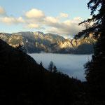 Trenchtling hebt sich aus dem Nebel