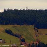 ....die Wildwiese, den jenseits der Wildwiese liegt Wenigzell, und da muss ich nun noch hinüber....